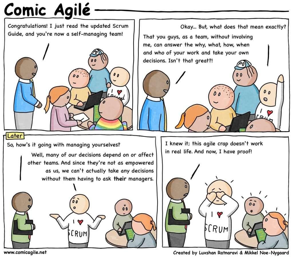 Agile teams are self-organizing teams